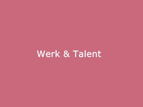 Voor Recruiters, Loopbaancoaches, Werkgevers en Werkzoekenden